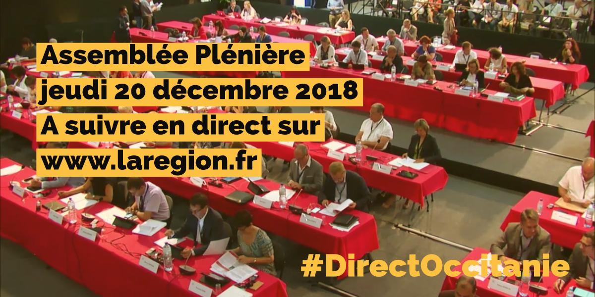 Assemblée plénière de la Région Occitanie / Pyrénées-Méditerranée