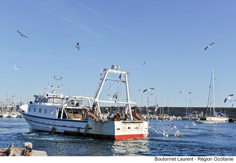 Pour le maintien des activités de pêche en Occitanie  –   Vœu présenté par les groupes Socialiste Républicain et Citoyen, et Radicaux à l'Assemblée Plénière du 16 novembre 2018